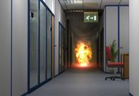 Fire examination